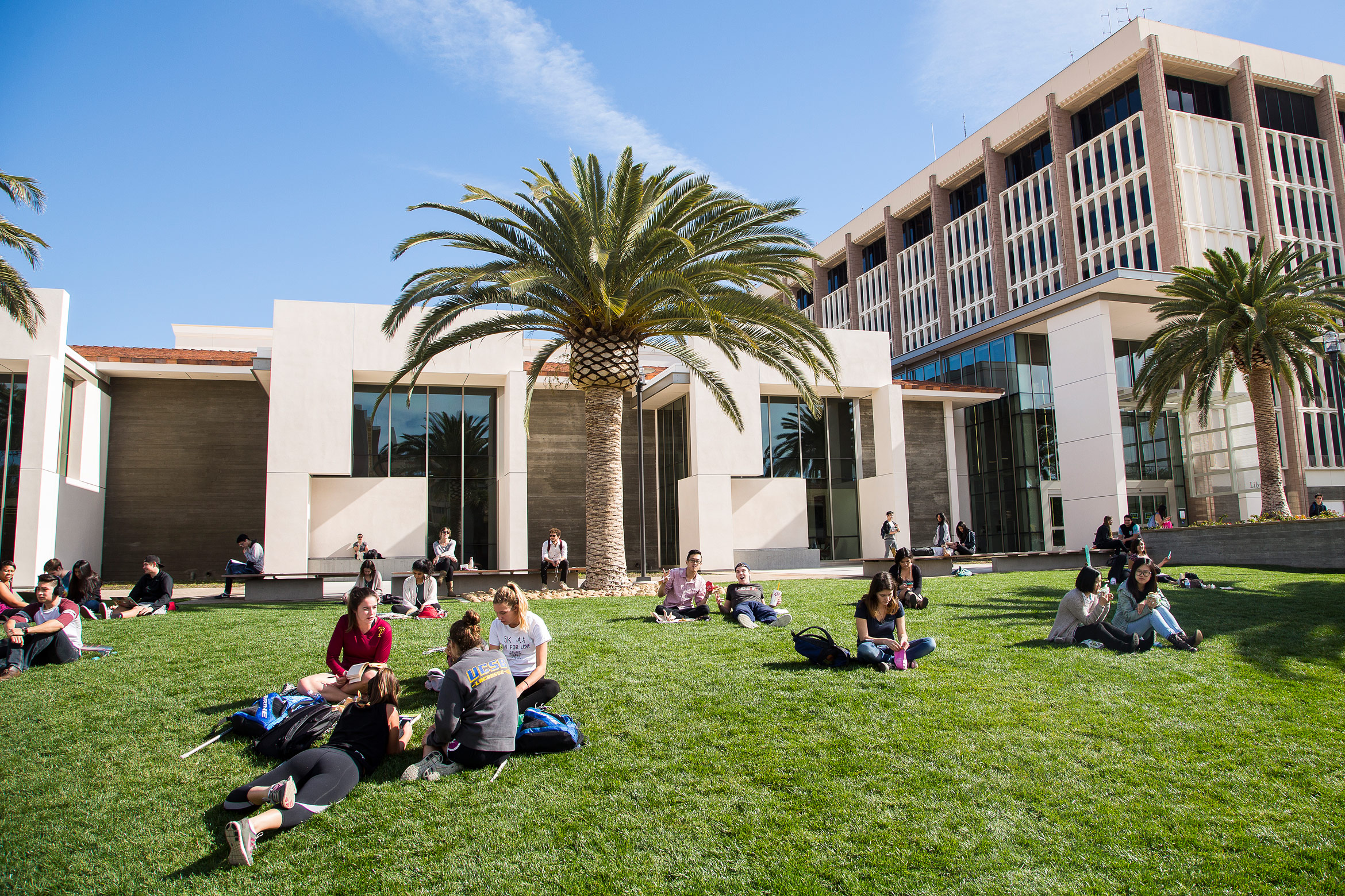 Summer Sessions library lawn UC SantaBarbara
