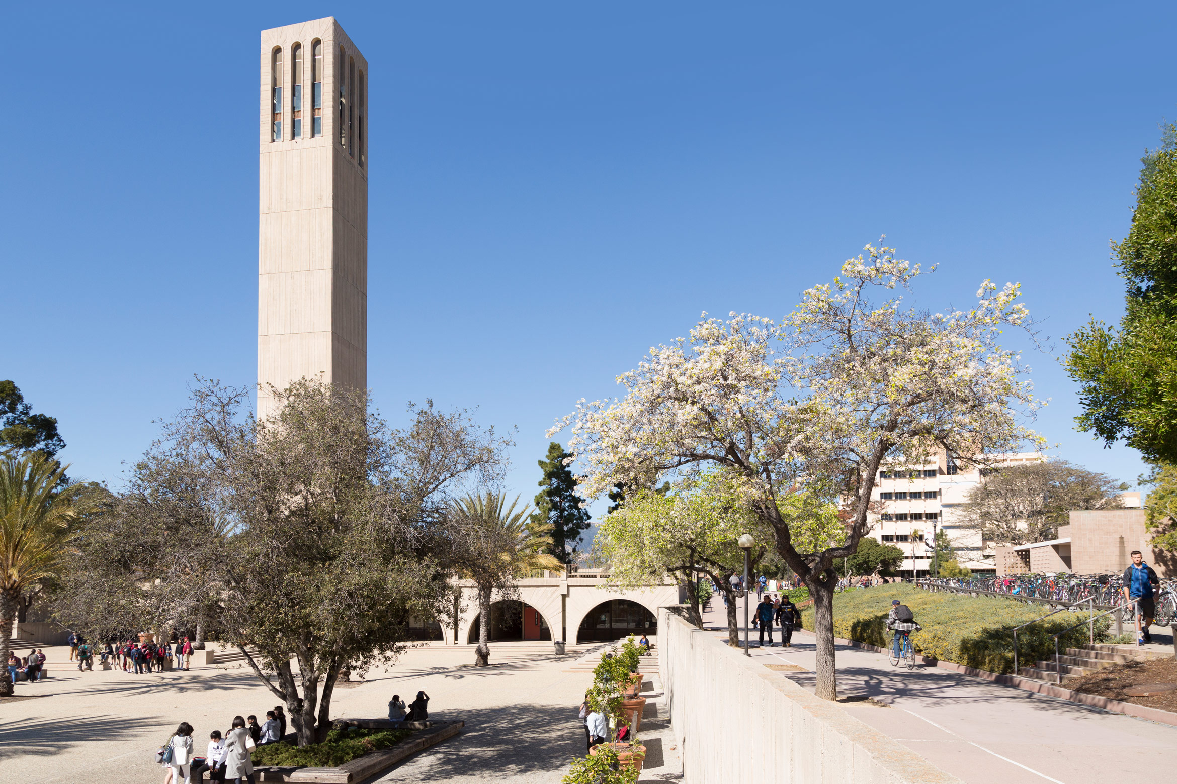 undergrad admissions international UC Santa Barbara